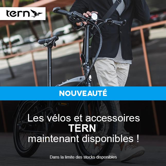 I TERN - 4