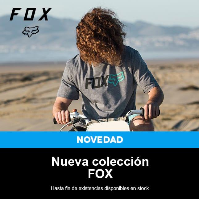 Fox-2017 - 1