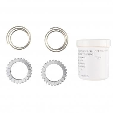 Kit Roquetes + Molas DT SWISS RATCHET 18 Dentes